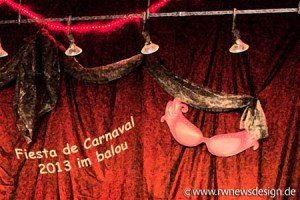 0Fiesta de Carnaval 2013 MG 1059