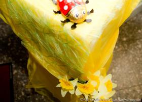 5fiesta-de-mayo2019 Foto Ramon-Wachholz IMG 4098